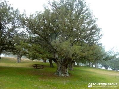 Enebral, Ermita Hornuez–Villa Maderuelo; mochila senderismo; viajes septiembre